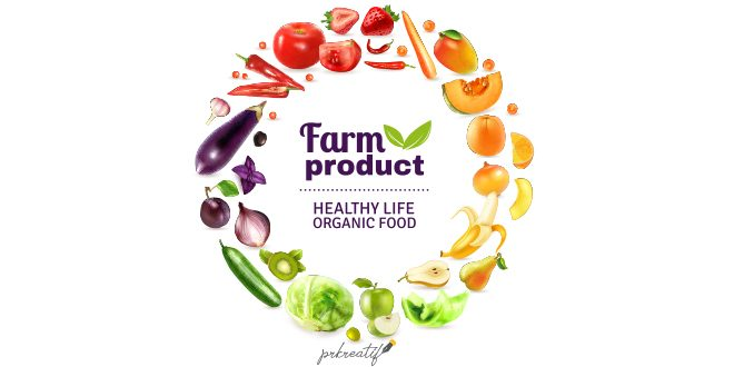 Vegetables fruits rainbow poster Vector